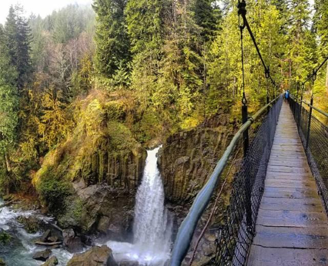Hike - Drift Creek Falls Trail