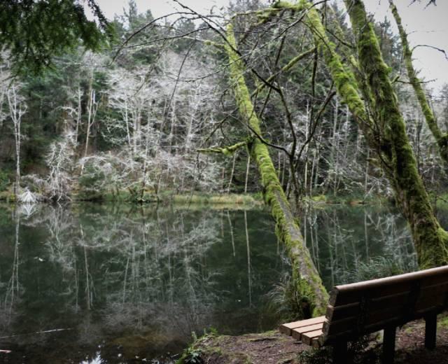 Spring Lake Open Space